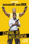 Central de Inteligência / Central Intelligence (2016)
