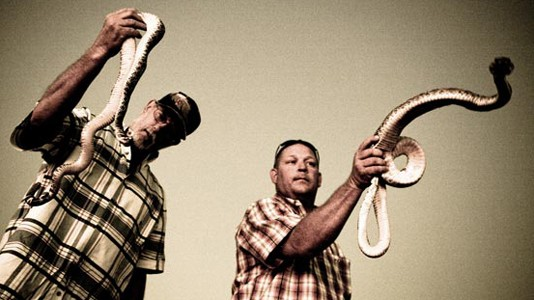 &quot;Rattlesnake Republic&quot; estreia em maio no Discovery HD Showcase