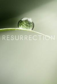 Poster da série Resurrection (2013)