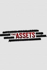 Poster da série The Assets (2014)