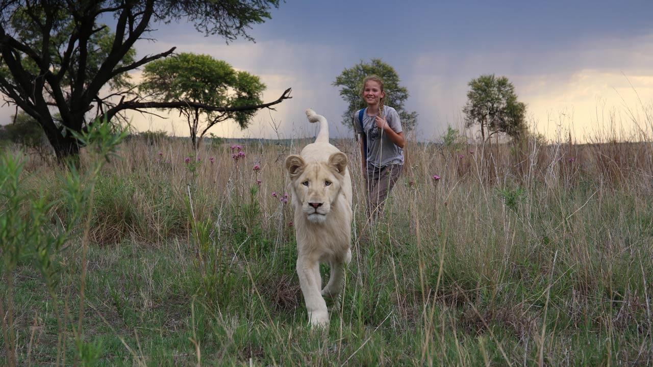 Mia e o Leão Branco / Mia et le lion blanc (2018)
