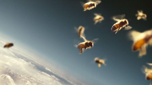 Abelhas e Homens / More Than Honey (2013)