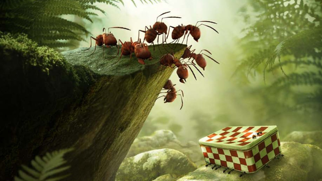 Minúsculos: O Vale das Formigas / Minuscule - La vallée des fourmis perdues (2013)