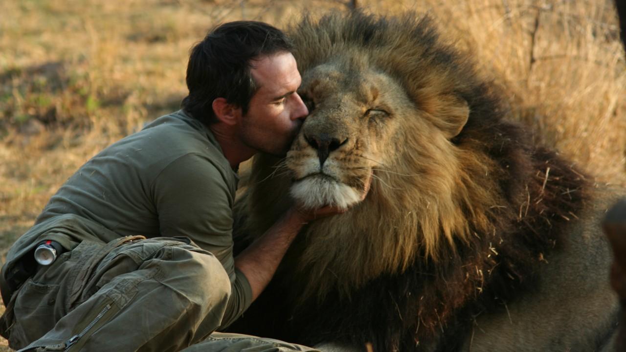 Safari em África / African Safari (2013)