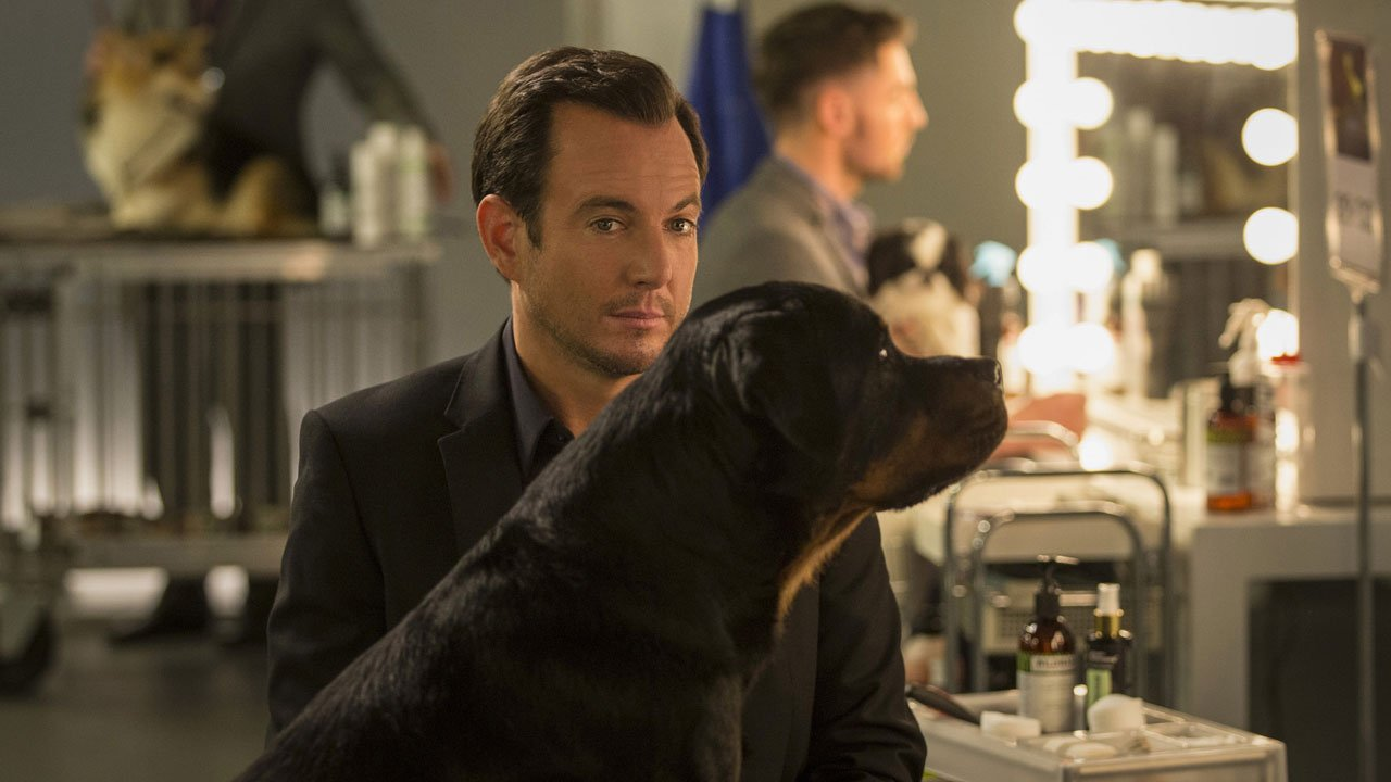 Cães à Solta / Show Dogs (2018)
