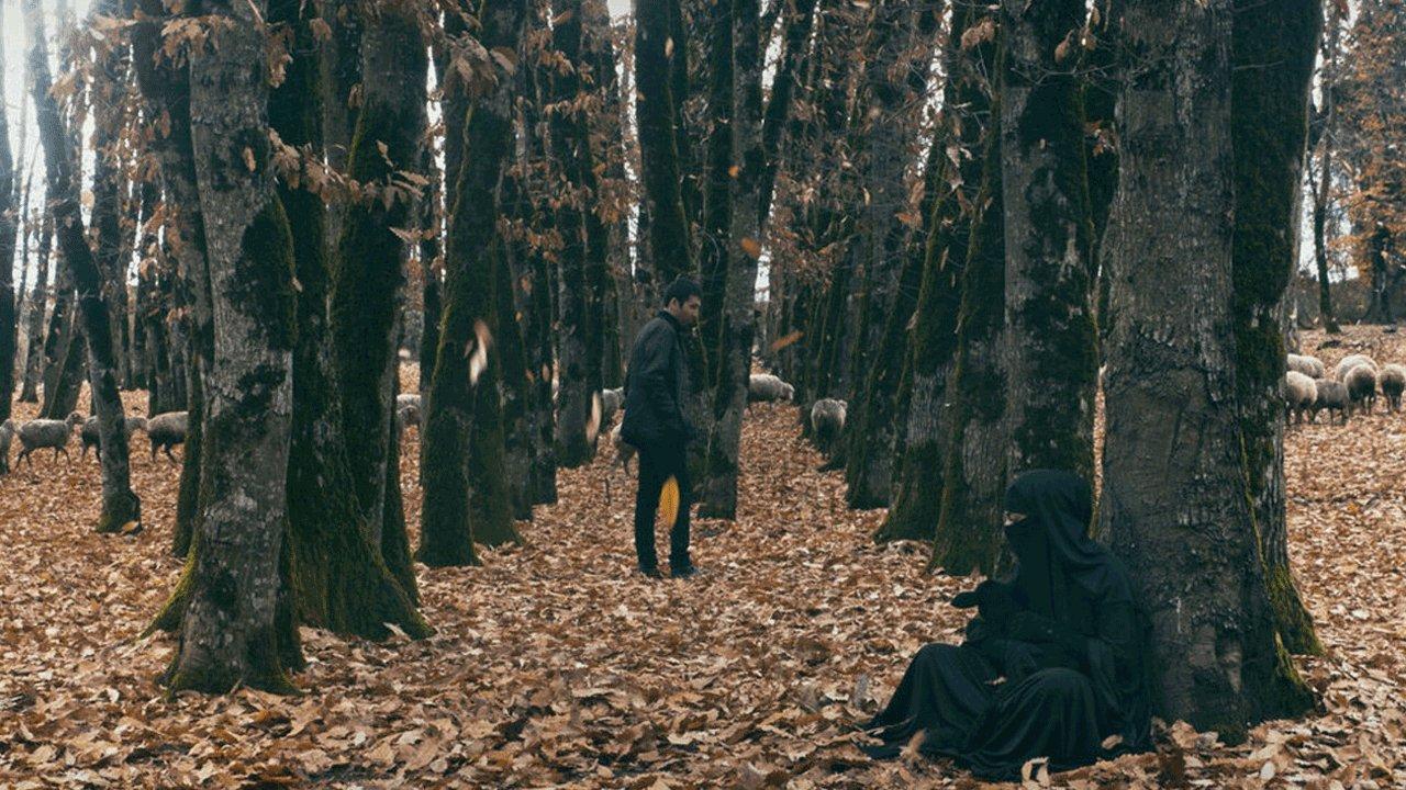 Entre a Morte / Səpələnmiş Ölümlər Arasında (2020)