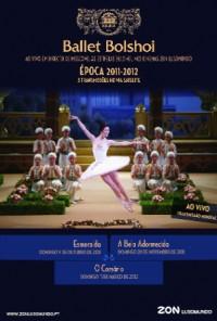 Poster do filme Bailado O Corsário / Le Corsaire (2012)