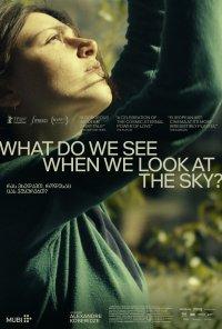 Poster do filme Ras vkhedavt, rodesac cas vukurebt? / What Do We See When We Look at the Sky? (2021)