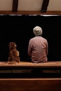 Poster do filme Pardé - Closed Curtain (2013)