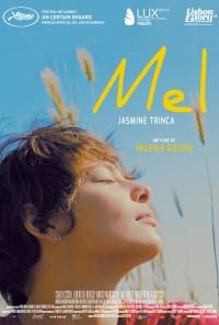 Poster do filme Mel / Miele (2013)