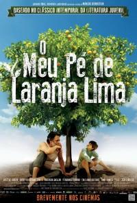 Poster do filme Meu Pé de Laranja Lima (2013)