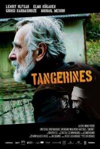 Poster do filme Tangerinas / Mandariinid / Tangerines (2013)