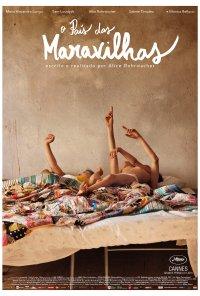 Poster do filme O País das Maravilhas / Le Meraviglie (2014)