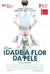 Poster do filme Idade À Flor da Pele / Short Skin (2014)