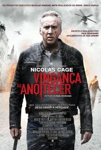 Poster do filme Vingança ao Anoitecer / Dying of the Light (2014)