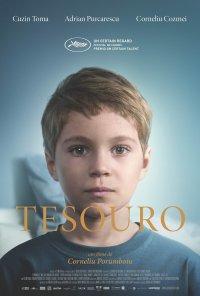 Poster do filme Tesouro / Comoara / The Treasure (2015)