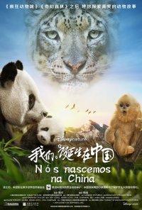Poster do filme Nós Nascemos na China / Born in China (2016)