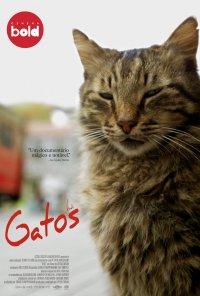 Poster do filme Gatos / Kedi (2017)