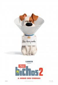 Poster do filme A Vida Secreta dos Nossos Bichos 2 / The Secret Life of Pets 2 (2019)