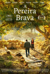 Poster do filme A Pereira Brava / Ahlat Ağacı / The Wild Pear Tree (2018)