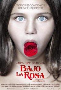 Poster do filme O Enigma da Rosa / Bajo la rosa (2017)