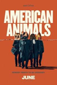 Poster do filme American Animals - O Assalto / American Animals (2018)