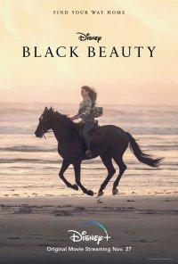 Poster do filme Beleza Negra / Black Beauty (2020)