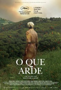 Poster do filme O Que Arde / Viendra le Feu (2019)