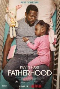 Poster do filme Paternidade / Fatherhood (2021)