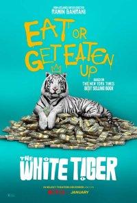 Poster do filme O Tigre Branco / The White Tiger (2021)