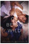 Days of Being Wild – Dias Selvagens (reposição)