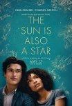 Trailer do filme O Sol Também É Uma Estrela / The Sun is Also a Star (2019)