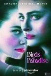 Trailer do filme Birds of Paradise (2021)
