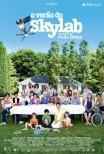 O Verão do Skylab