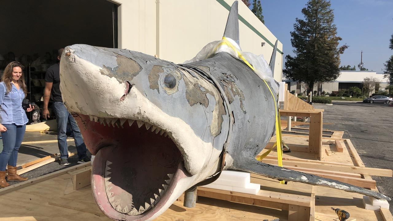 """Último modelo existente do tubarão de """"Jaws"""" salvo pelo museu da academia norte-americana"""