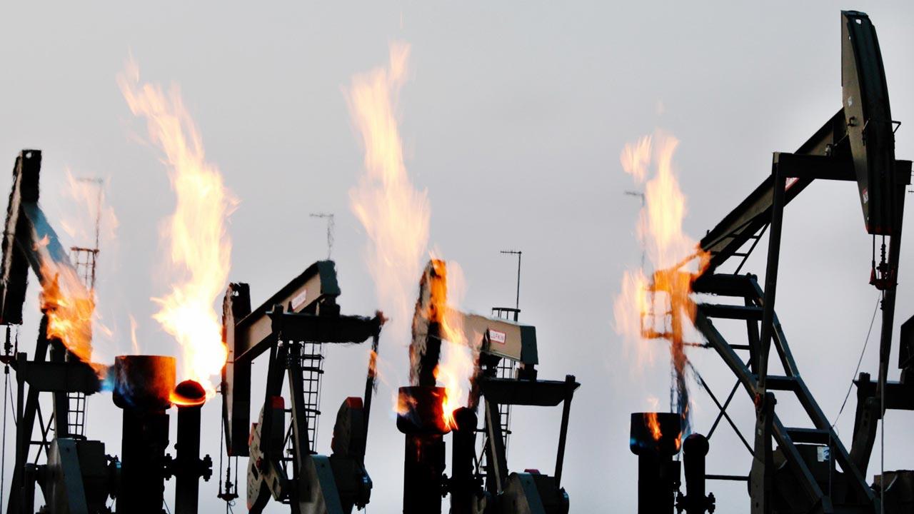 Documentário de Leonardo DiCaprio sobre o aquecimento global em sessão pública na Gulbenkian