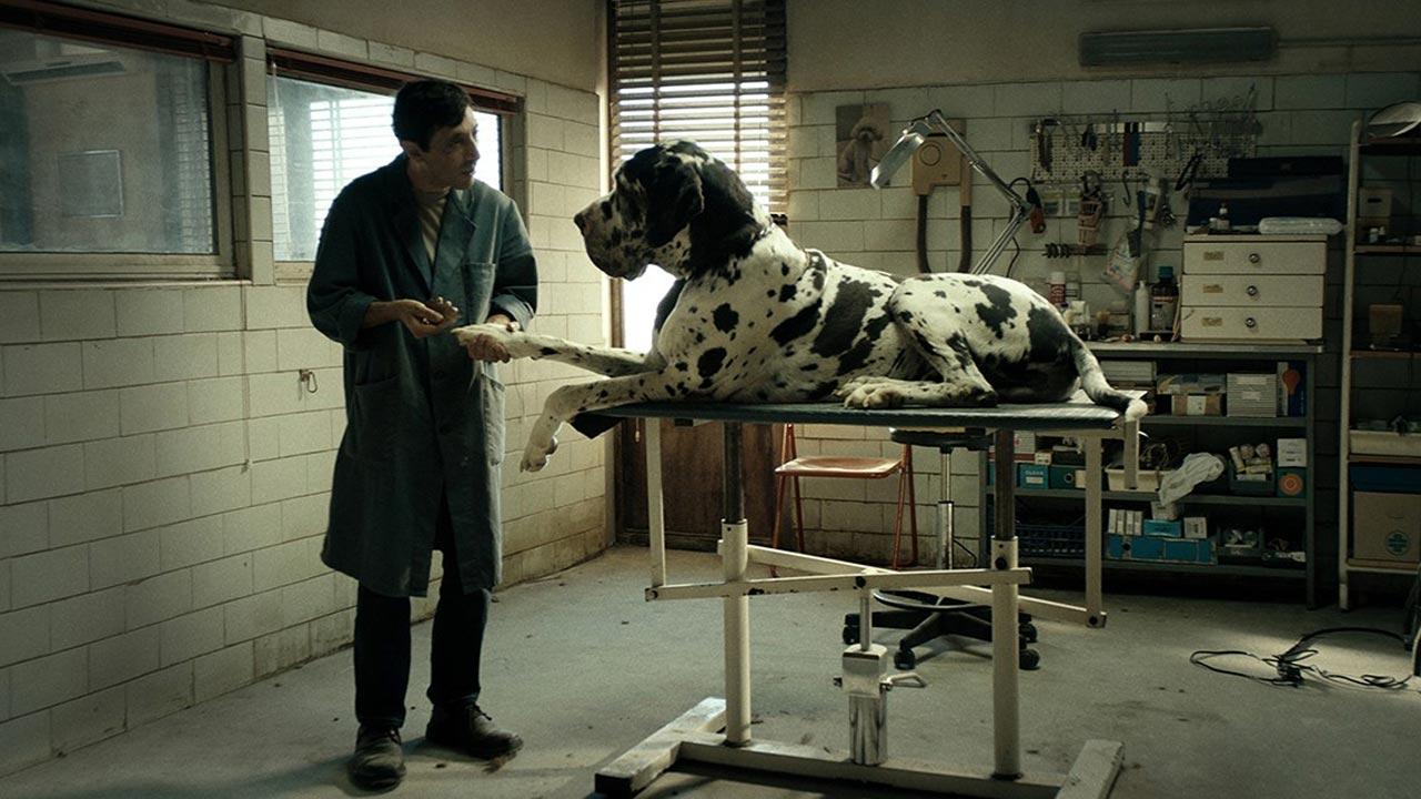 Cinema italiano na Filmin e nos canais TVCine