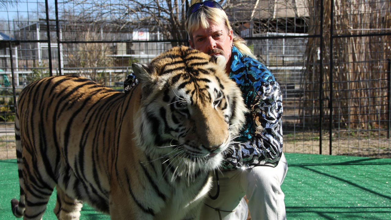 """Joe Exotic: Tigers, Lies and Cover-Up"" em estreia no canal ID"