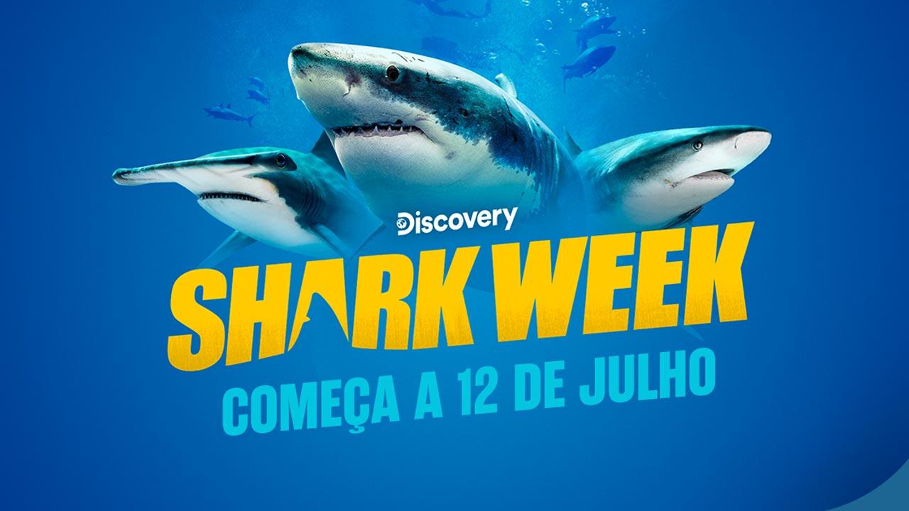 "O que há para ver na ""Shark Week""  2021 do Discovery"