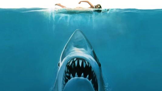 """Quem quer ver """"Tubarão"""" dentro de água?"""