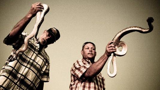 """""""Rattlesnake Republic"""" estreia em maio no Discovery HD Showcase"""