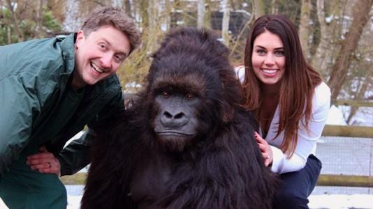 """""""Seremos Verdadeiros Macacos?"""" em setembro no National Geographic Channel"""