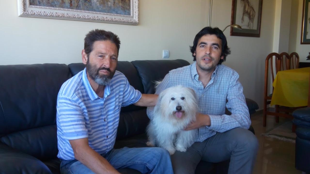 """Dixie: cão do filme português """"Mil e Uma Noites"""" premiado em Cannes"""