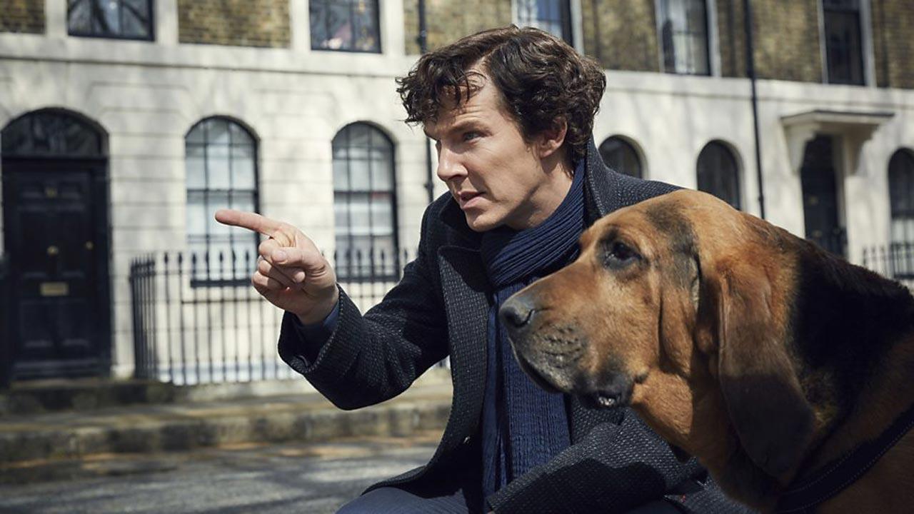 Sherlock - Temporada 4 5/5: Benedict Cumberbatch regressa à pele de Sherlock Holmes
