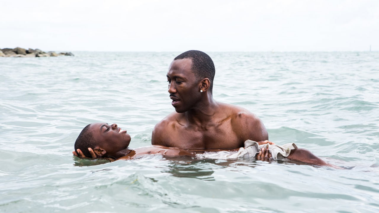"""Moonlight"" vence Independent Spirit Awards"