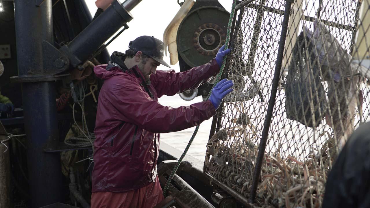"""""""Pesca Radical"""": nova temporada estreia a 24 de junho no Discovery Channel"""