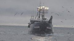 """""""Pesca Radical"""": nova temporada coloca russos contra americanos"""