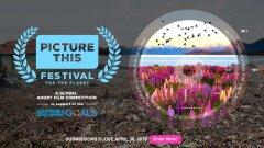 """Sony Pictures Television e fundação das Nações Unidas lançam """"Picture This Festival For The Planet"""" para dar a conhecer novos realizadores"""