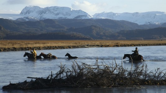 """""""Especial: Sextas no Alaska"""" em novembro no Discovery Channel"""