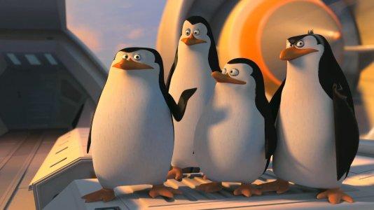 """Os pinguins do """"Madagáscar"""" têm o seu próprio filme e este é o primeiro trailer"""